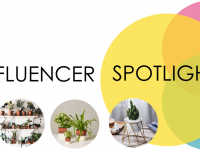Influencer Spotlight: Indoor Plants